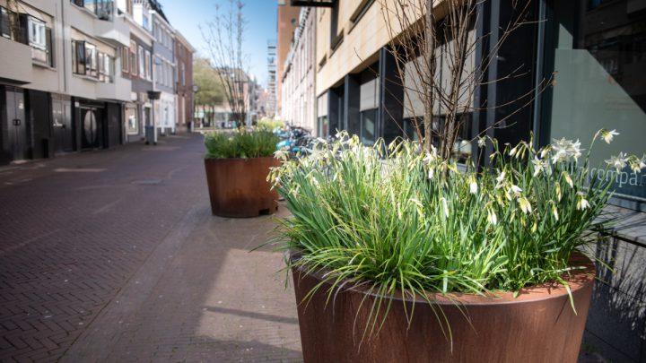 Vergroening Arnhemse binnenstad: de finale