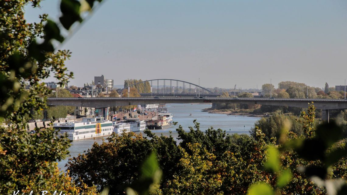 Songfestival welkom in Arnhem